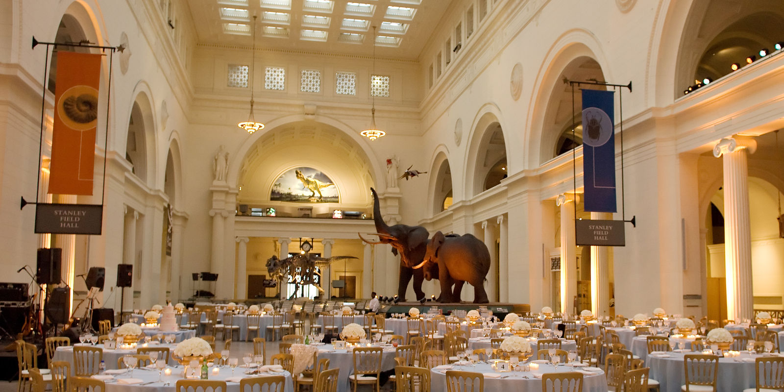 Host An Event At The Museum Of Natural History