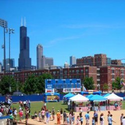 UIC Picnic Grove corporate picnic