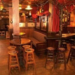 fado irish pub river north event space