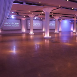 Venue One Decor- Existing Projection Screens
