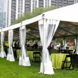 Maggie Daley Park Corporate Picnic Grounds Chicago