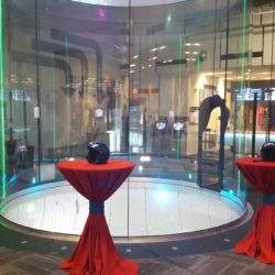 IFLY Rosemont Corporate Group Outings