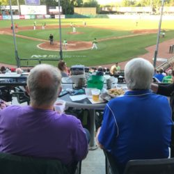 kane county cougars seating bowl