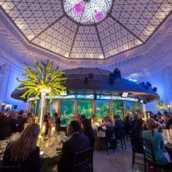 Shedd Aquarium Reception Space