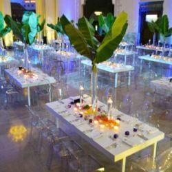 Shedd Aquarium Chicago Corporate Events Spaces