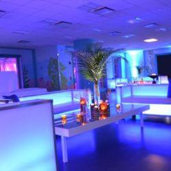 Corporate Party Shedd Aquarium Chicago