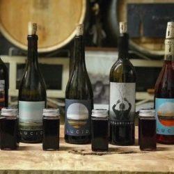 Virtual Wine Tasting  Kits